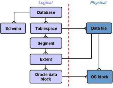 physical level, the data is stored in data files on disk. The data in the data