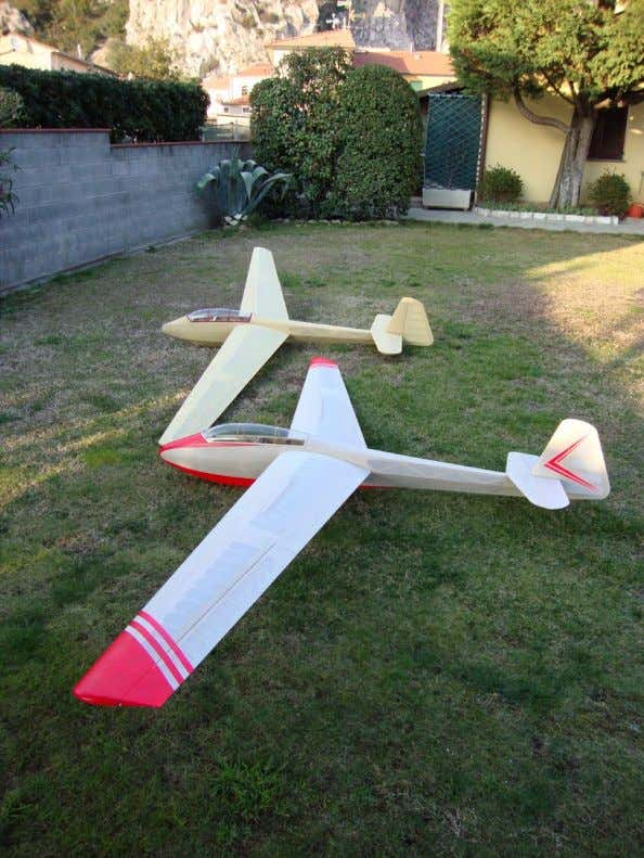 measuring 310 mm that gives the model Bruno Tomei's model, ready to fly, behind Gino's 3