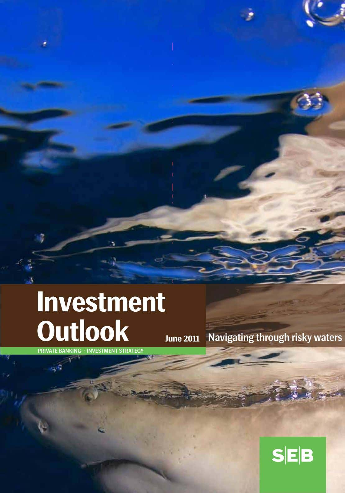 Investment Outlook June 2011 navigating through risky waters private banking - investment strategy
