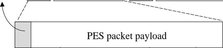 PES packet payload