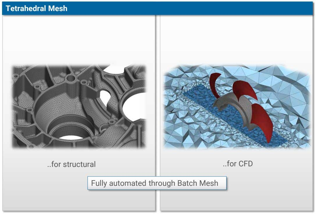 Tetrahedral Mesh for structural for CFD Fully automated through Batch Mesh