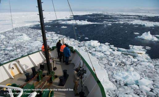 The MY Arctic Sunrise heading south to the Weddell Sea © Daniel Beltrá / Greenpeace