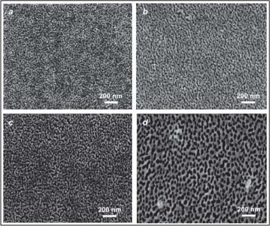 good bonding of the sol-gel films with the substrates [7]. FIGURE 2. The SEM images of