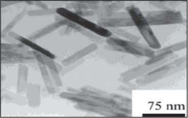 TiO 2 nanoparticles prepared by hydrothermal method [10]. FIGURE 5. TEM images of TiO 2 nanorods