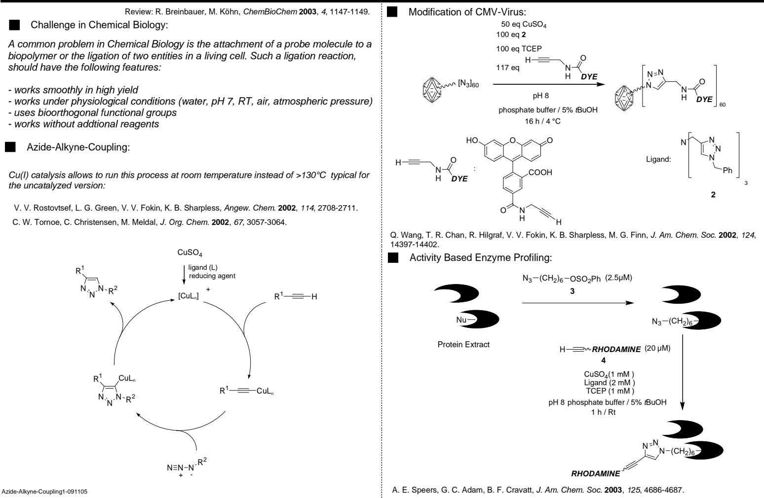 Review: R. Breinbauer, M. Köhn, ChemBioChem 2003, 4, 1147-1149. Modification of CMV-Virus: Challenge in Chemical