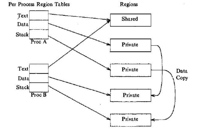 must physically copy the region, it allocates a new region table entry, page table, and physical