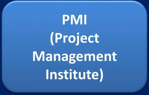 PMI (Project Management Institute)