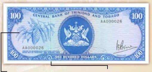 $100 Note – Colour Blue Branch with Coffee Bean (specific) Solid Security Thread Solid Security Thread