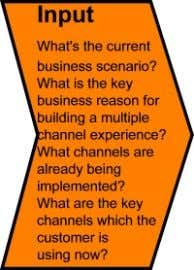 segmenting this experience into the different channels. The Input • What is the current business scenario?