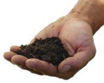 in Lecture 5 What is natural soil? What is urban soil? • Soil formation • Factors
