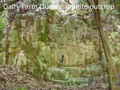 Dairy Farm Quarry: granite outcrop