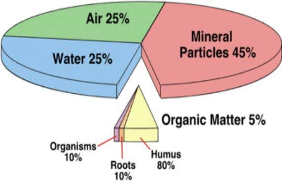 solution). Gases: atmospheric gases and the gases liberated by biological activity and chemical reactions within soil.