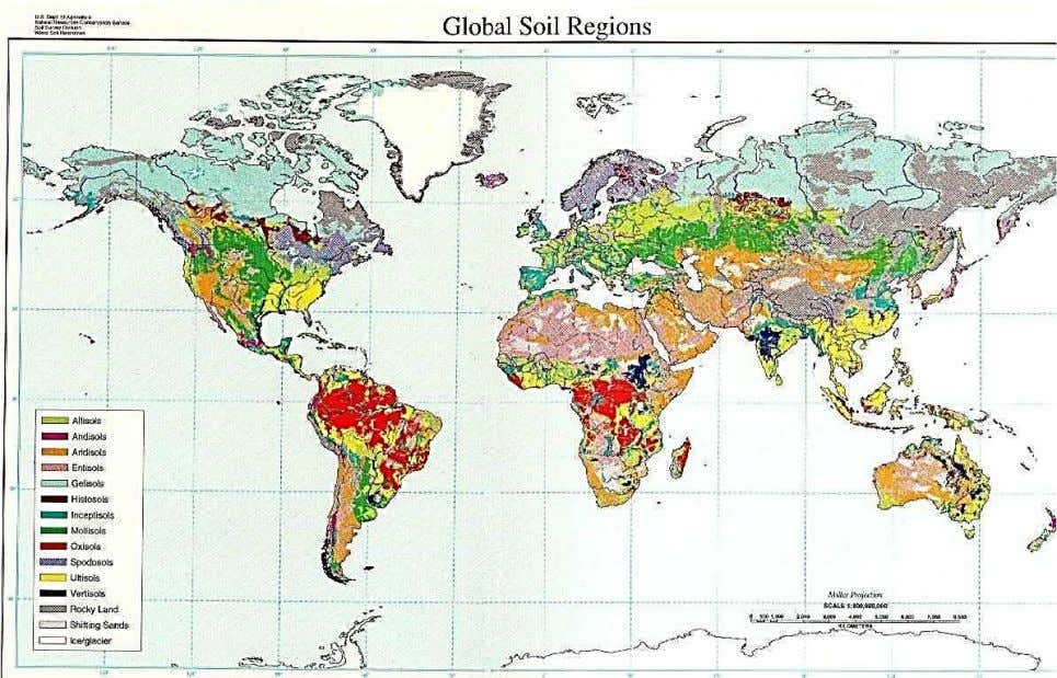 systems FAO/UNESCO (1974): The Soil Map of the World US Dept of Agric ' Soil Survey