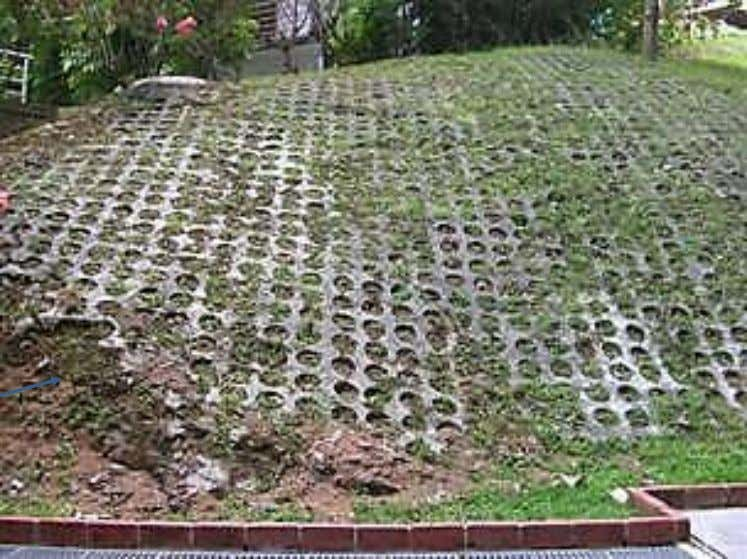 Soil stabilization in Singapore Note slope failure and soil erosion Biotechnical stabilization: reinforced grass or