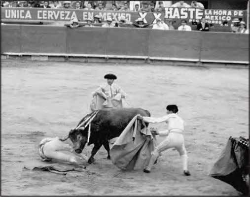 the banderillas, in Plaza Mexico bullring, Mexico City 1954. A close call with no injuries, Plaza