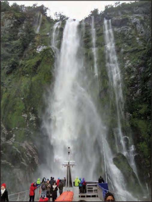 feet straight up in the air, no trees, no soil, just rock. Waterfall at Milford Sound.