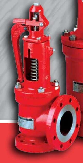 304C Series 2600 Pressure Relief Valves