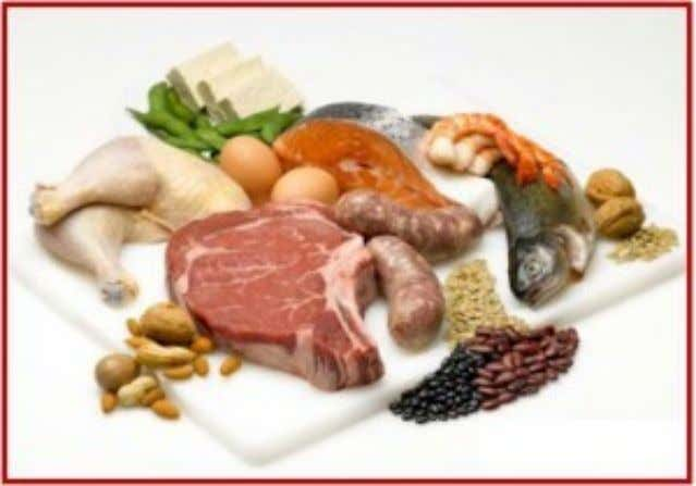 Proteins Examples – Forms skin, muscle, hair and bone – collagen and keratin – Enzymes –