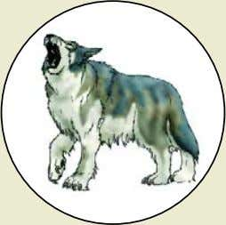 Dire Wolf Monster Rating : 95 (typically found on dungeon level 1) Combat Dice :