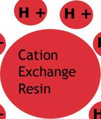 H + H + Cation Exchange Resin