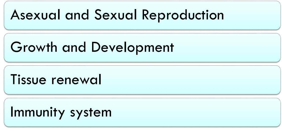 Asexual and Sexual Reproduction Growth and Development Tissue renewal Immunity system