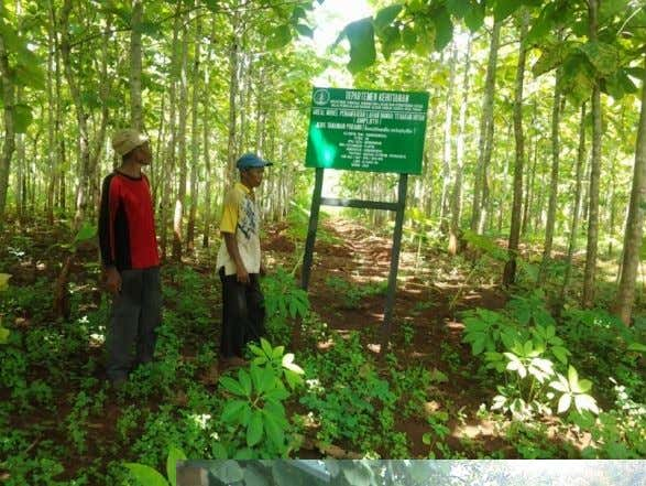 activities; • Family' labors work forest management and other economic activities in and outside villages