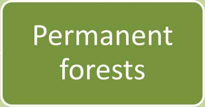 Permanent forests