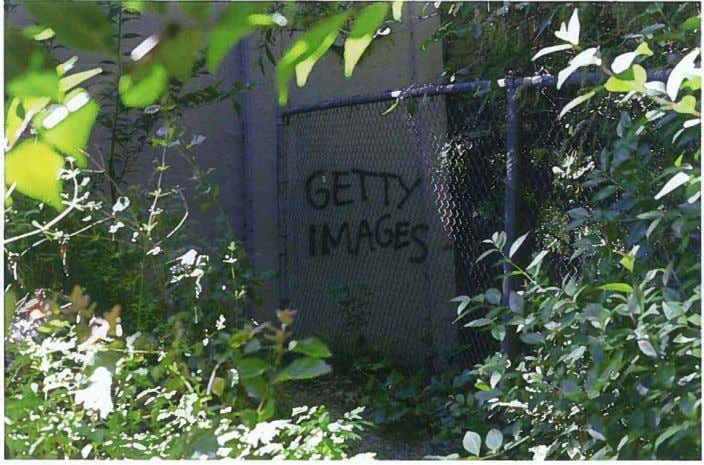 Graffiti of Getty Images Watermark, 2012. Photo by Jerry Hsu ANP: I'm curious how you