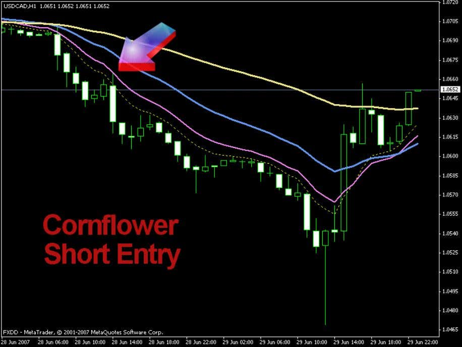 Cornflower Trading System Last update: July, 19th 2007 Page 10