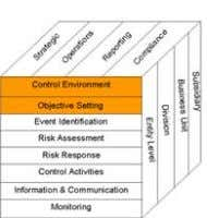 Risk attitude Control Environment • Corporate culture • Management style • Organisational structure • Methods