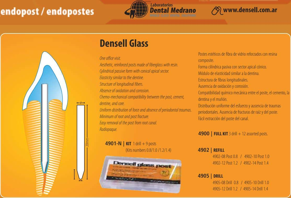 Densell Glass One office visit. Aesthetic, reinforced posts made of fiberglass with resin. Cylindrical passive