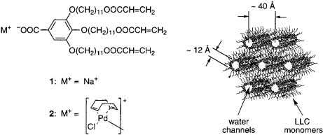 (b) Mehnert, C. P.; Ying, J. Y. Chem. Commun. 1997 , 2215. Figure 1. The structure