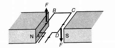a current carrying conductor in a magnetic field/ diagram (c)(i) 1 s t : The shape