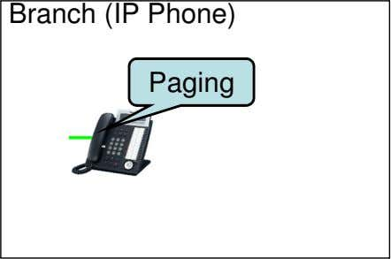 Branch (IP Phone) Paging