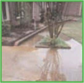 DRAINAGE DRAINAGE SOLUTIONS SOLUTIONS Irrigation Systems, Inc. Your Exterior Drainage Specialists Solve your outside drainage problems
