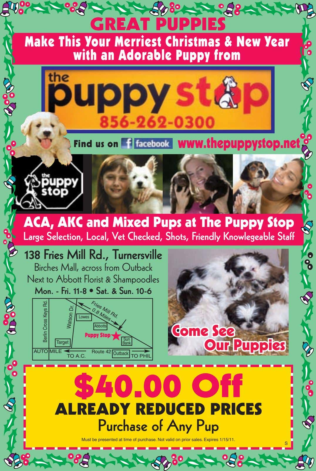 GREAT PUPPIES Make This Your Merriest Christmas & New Year with an Adorable Puppy from Find