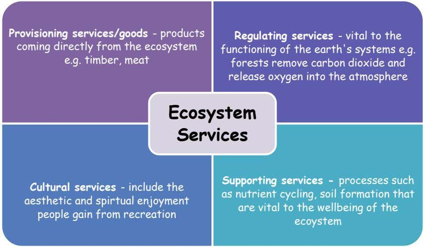 Provisioning services/goods - products coming directly from the ecosystem e.g. timber, meat Regulating services - vital