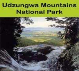 Named Example: Udzungwa Mountains National Park: a pristine area This national park has huge amounts of