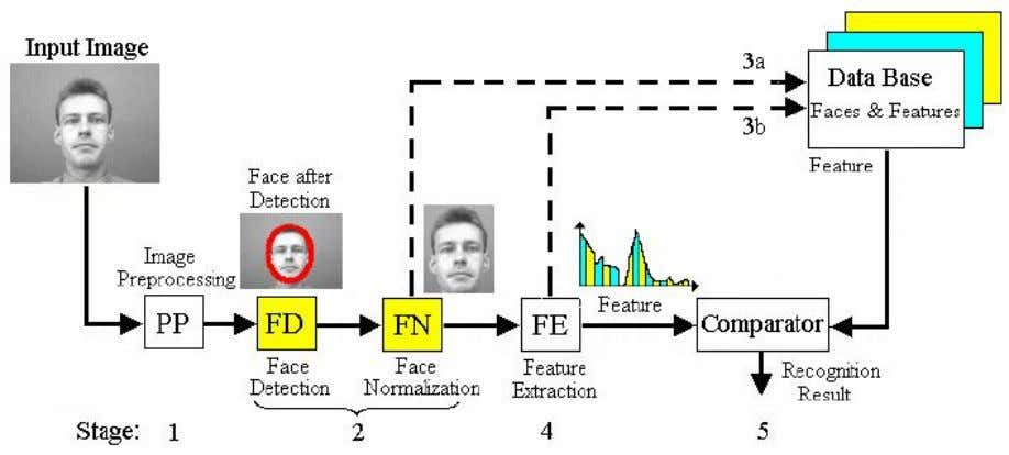 mathematical tool called Principal Component Analysis (PCA). Figure 2: Structure of Face Recognition System By means