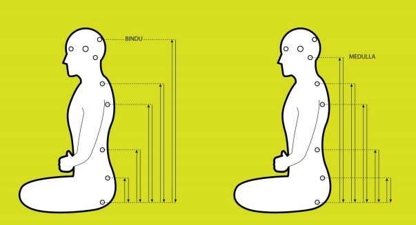perceive your breath is very calm – almost imperceptible. Figure 4. One cycle of Kriya Pranayama