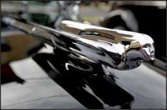 the lot at other car enthusiasts. PITTSTON C Poppin' t The hood ornament of a black