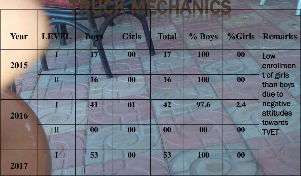 TRUCK MECHANICS Year LEVEL Boys Girls Total % Boys %Girls Remarks I 17 00 17 100