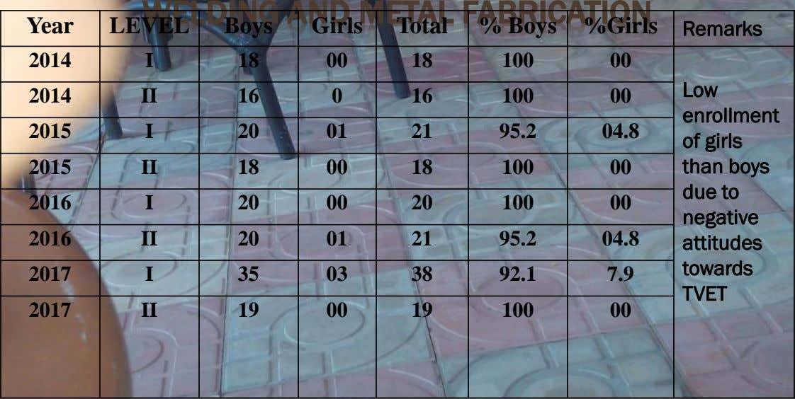 WELDING AND METAL FABRICATION Year LEVEL Boys Girls Total % Boys %Girls Remarks 2014 I 18