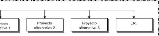 Proyecto Project Proyecto Project Etc. etc alternativa alternative 2 2 alternativa alternative 3 3