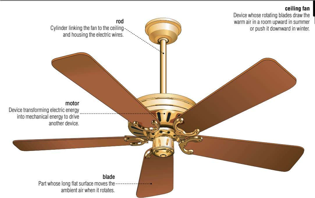 rod Cylinder linking the fan to the ceiling and housing the electric wires. ceiling fan