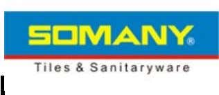 S OMANY TILES : In the Indian tiles sector, Somany has achieved a clear leadership position