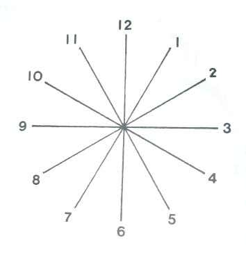 from the center, as shown in diagram B. these lines correspond to the clock angle from