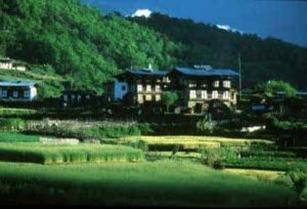 get a helicopter from Thimphu. Both are often several days' walk. Initially, many people planned and