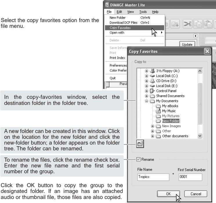Select the copy favorites option from the file menu. In the copy-favorites window, select the