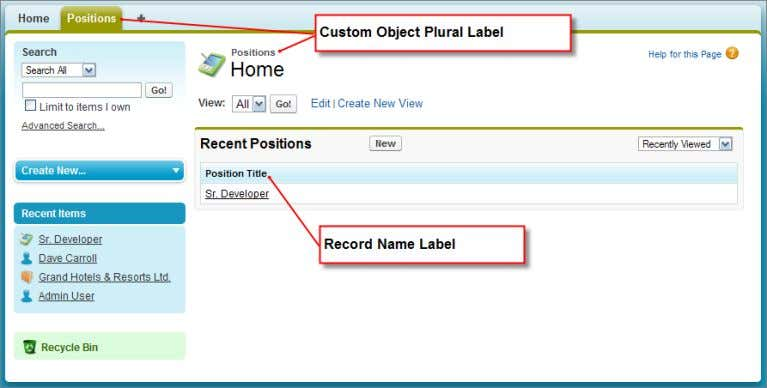 object, its tab, and a single Sr. Developer position record. Figure 13: Custom Object and Record